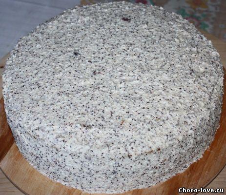 торт с шоколадом фото
