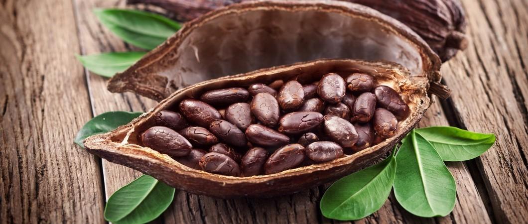 Несколько интересных фактов о шоколаде