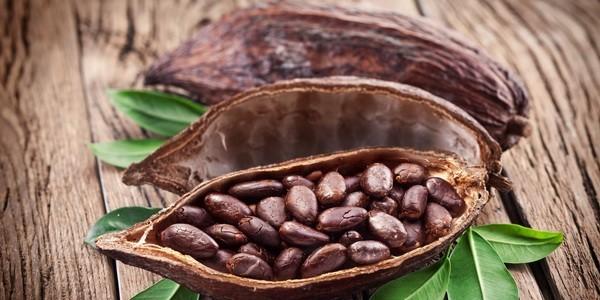 Полезен ли шоколад? Исследования показали что польза шоколада очевидна. Расскажем в статье какой шоколад полезен